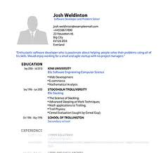 job resume template pdf example of a resume for a job application
