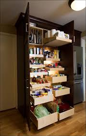 Pantry Cabinet With Pull Out Shelves by 100 Pantry Pull Out Shelves Pantry Pullout Shelves And