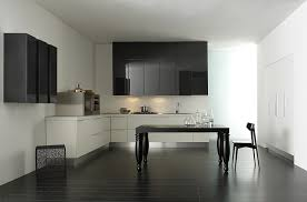 Modern Kitchen Cabinets Chicago Modern Contemporary Kitchen Cabinets Awesome House