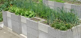 vegetable garden ideas for small gardens patio vegetable garden