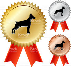 dog ribbon dog silhouette gold medal prize ribbons stock vector more