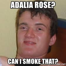 Adalia Rose Meme - adalia rose can i smoke that really stoned guy meme generator