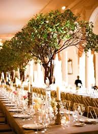 wedding decorations with tree branches decoration table