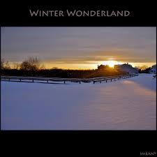 my backyard ny blizzard u003d winter wonderland imran stu u2026 flickr