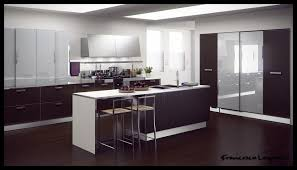 Contemporary Design Kitchen by Tag For Contemporary Kitchen Cabinets Design Nanilumi