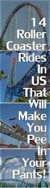 best 25 roller coaster ideas on pinterest crazy things roller