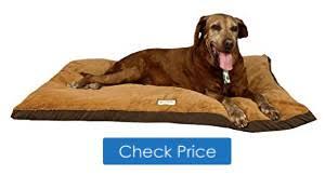 best xxl dog beds buyer u0027s guide topviking