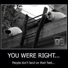 Ladder Meme - 4 funny cats land on their feet dump a day