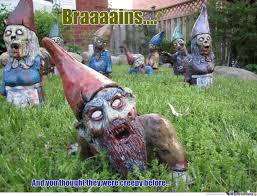 Gnome Meme - gnomes memes best collection of funny gnomes pictures