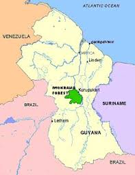 guyana on world map guyana ecotourism it is a jungle out there at jetsetters