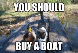 Newspaper Cat Meme - i should buy a boat cat know your meme