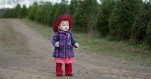 acres christmas tree farm is a beautiful family adventure
