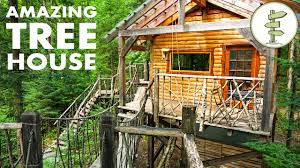 Tree House Home Tiny Tree House With Hanging Bridge Makes Off Grid Living Fun