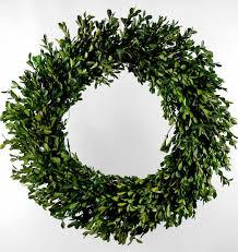 preserved boxwood wreath preserved boxwood wreath green