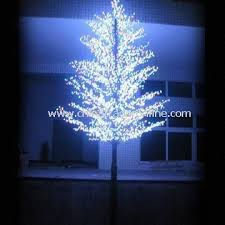 white tree led lights rainforest islands ferry