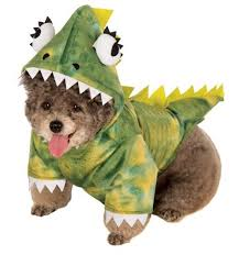 Dog Minion Halloween Costumes Adorable Funny Dog Costumes U2013 Skarro U2013 Fun U2013 Live Color