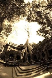 ta photographers cambodia sepia toned vermont photographers david seaver