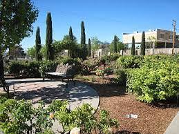 Botanical Gardens El Paso El Paso El Paso Municipal Garden