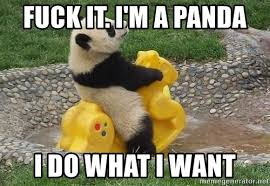 I Do What I Want Meme - fuck it i m a panda i do what i want rockin pandas meme generator