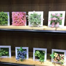 imitation plants home decoration fake plants picture more detailed picture about artificial