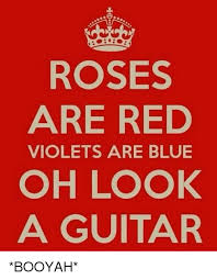Roses Are Red Violets Are Blue Meme - roses are red violets are blue oh look a guitar booyah meme on