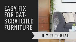 furniture simple what stops cats from scratching furniture room