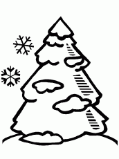 pine tree coloring pages house and trees coloring pages coloring pages coloring home