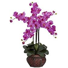 amazon com nearly natural 4804 phalaenopsis silk flower