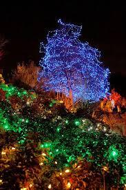 259 best festive garden lighting images on pinterest garden deco