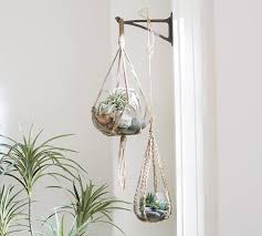 hanging glass terrarium with pottery barn