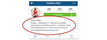 how to create a striking profile on instagram carli van heerden