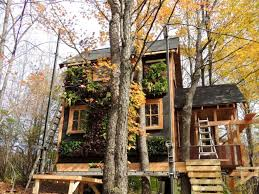 Best Treehouse Tree House Living Vacation Best House Design Tree House Living