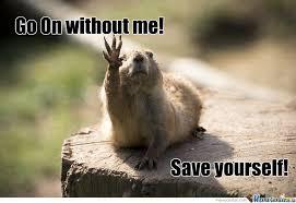 Funny Cute Animal Memes - cute animal by foxtrick9 meme center