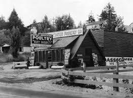 Lowman Beach Park West Seattle Gatewood Neighborhood by Seattle Now And Then Dorpatsherrardlomont Page 4