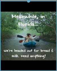Florida Rain Meme - we don t need turn signals florida life pinterest