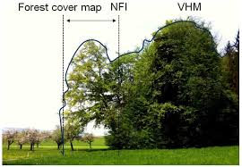 forests free full text wall to wall forest mapping based on