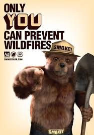 Smokey The Bear Meme - helpgood digital first marketing agency for nonprofits and cause