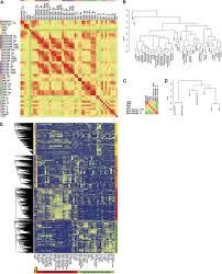 the grapevine expression atlas reveals a deep transcriptome shift