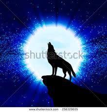 wolf howling moon vector illustration stock vector 256329655