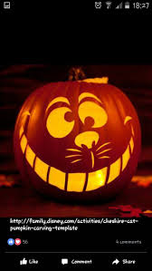 Zero Nightmare Before Christmas Pumpkin Carving Patterns by Best 25 Cheshire Cat Pumpkin Ideas On Pinterest Cat Pumpkin