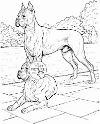boxer dogs coloring page for kids animal coloring pages