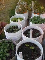 diy self watering herb garden container gardening using diy self watering pots early retirement