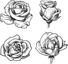 imagenes para colorear rosas dibujos de rosas para colorear dibujos de rosas dibujos de y colorear
