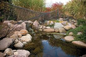 Aquascape Ponds Pond Construction Pond Maintenance Water Feature Installers In