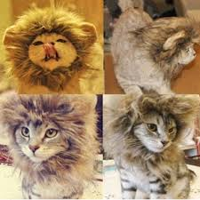 Dog Halloween Costume Lion Mane Pet Dog Cat Artificial Lion Mane Wig Halloween Costume