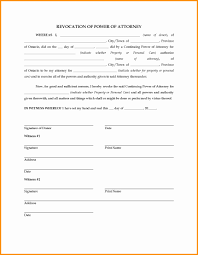Power Of Attorney Form Irs 8821 by 10 Irs Form Power Of Attorney Action Plan Template