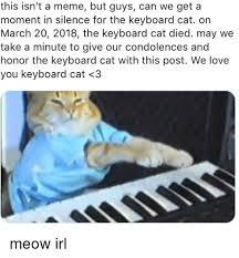 Keyboard Cat Meme - 25 best memes about keyboard cat keyboard cat memes