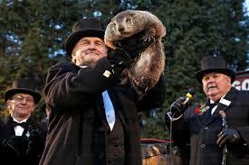 donald trump groundhog day and beyoncé top stories