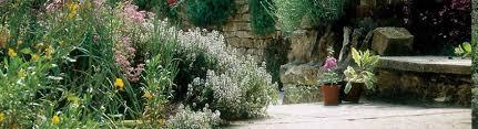 Art In The Garden - mill dene gardens art in the garden