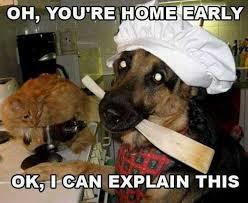 Oh You Dog Meme - so you re home early 20 photos worldwideinterweb